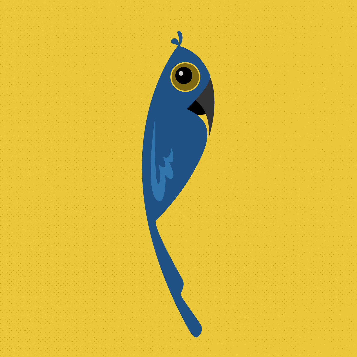 parrot-36days-lydiary